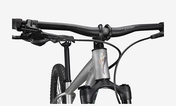 Specialized Rockhopper Expert 29 Silver Bike