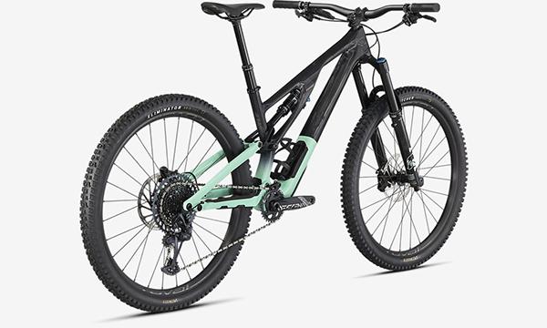 Specialized Stumpjumper EVO Expert Bike