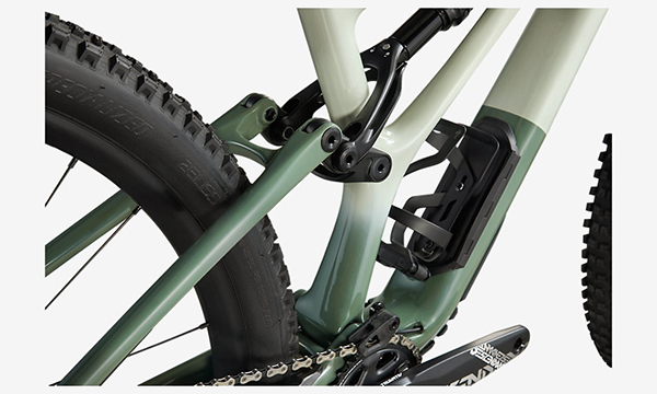 Specialized Stumpjumper Expert Green Bike