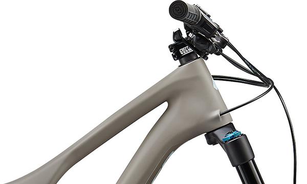 Specialized Stumpjumper Pemberton LTD Edition 29 Bike